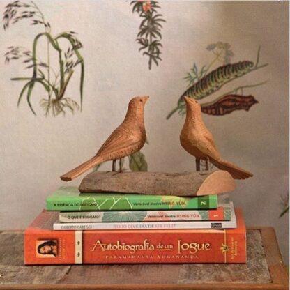 Pássaros - Zé Evaldo - Bahia - Entalhe em madeira - Cestarias Régio